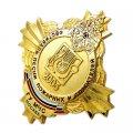 Нагрудные знаки МЧС России