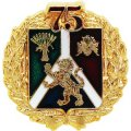 Изготовление VIP значков с покрытием золотом