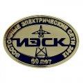 Металлические овальные значки 65 лет ИЭСК