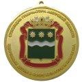 Памятная медаль Стипендия губернатора Амурской области Одаренным детям